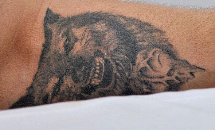 татуировка волка томаса харди