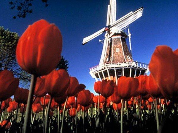 20 самых мирных стран в мире - Нидерланды
