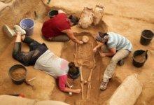 археолои