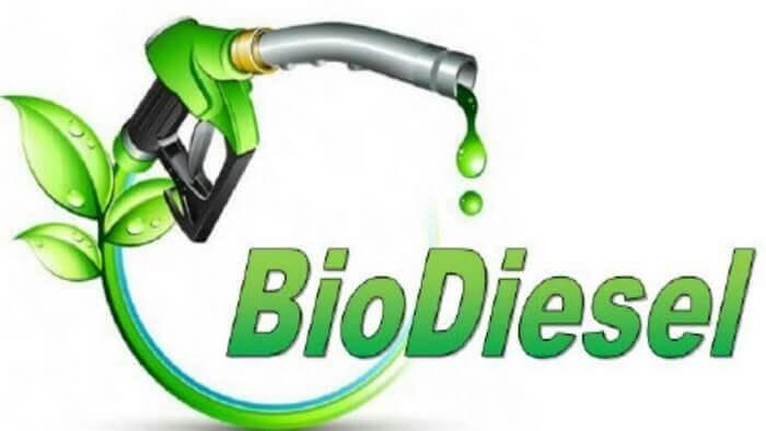 день биодизеля