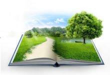 книга с зеленью и растениями