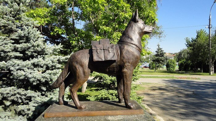 памятник собаке в Волгограде