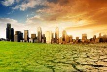 высыхание почвы от засухи