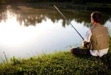 ловля рыбы на пруду