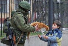 вежливый человек отдает кота ребенку